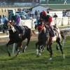 February 9, 2013 Raceday