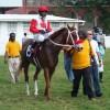 February 16, 2013 Raceday