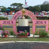 March 2, 2013 Raceday (XXXII SANDY LANE BARBADOS GOLD CUP RACEDAY)