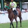 Raceday Of April 6, 2013 (The Sandy Lane Barbados Gold Cup Appreciation Raceday)