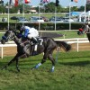 The Raceday of May 11, 2013