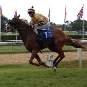 November 16, 2013 (Jockey Championship Raceday)