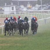 Raceday of December 14, 2013