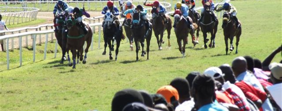 Barbados Turf Club 2020 Racing Calendar