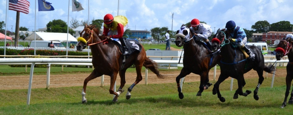 Take a VIRTUAL TOUR of the Barbados Turf Club