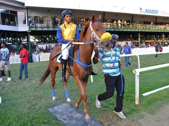 Boxing Day Raceday – December 26, 2014 (The Diamonds International/Crown Of Light Raceday)