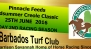The Pinnacle Feeds Midsummer Creole Classic June 25, 2016