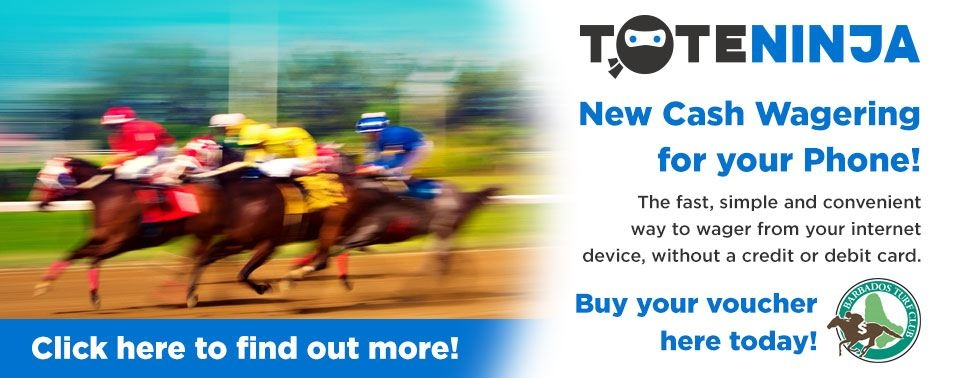 Toteninja, new cash wagering for your phone