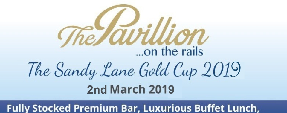 THE PAVILION ON THE RAILS, GOLD CUP 2019