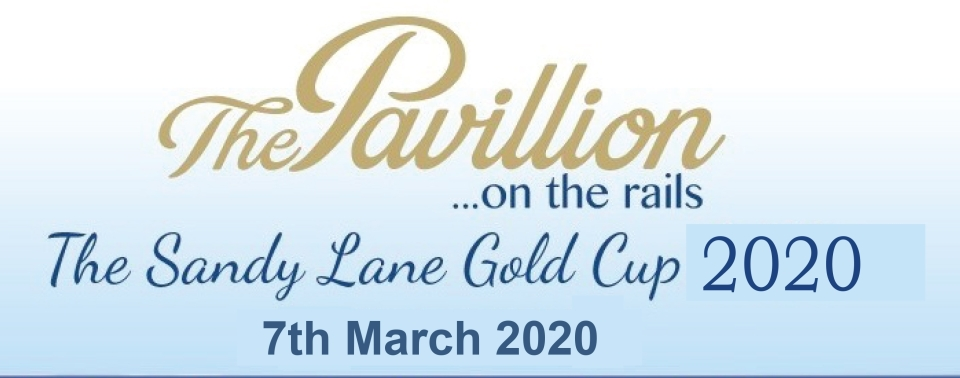 THE PAVILION ON THE RAILS, GOLD CUP 2020