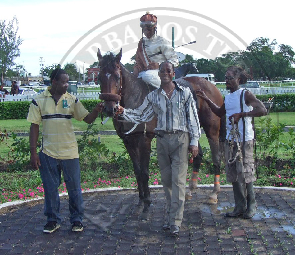 Official Website Of The Barbados Turf Club Horse Racing